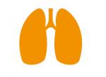 Tuberculosis 500